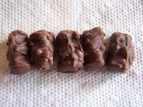 Chocolate Covered Gummi Bears